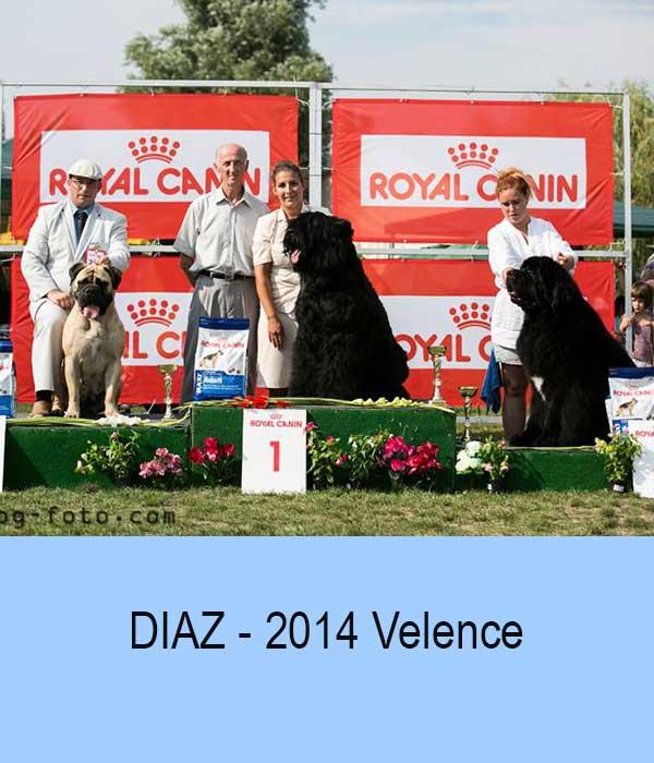 Diaz - 20140810 Velence