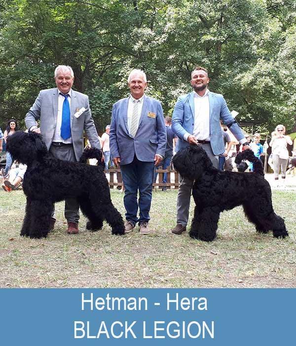 HETMAN Black Legion CAC, CACIB, BOB, BOG1 - HERA Black Legion CAC, CACIB, BOS